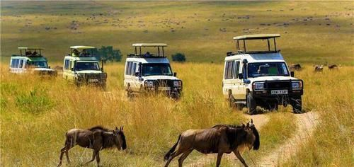 """非洲一种奇怪现象,满地""""玉石""""没人捡,还警告游客捡了就麻烦了"""