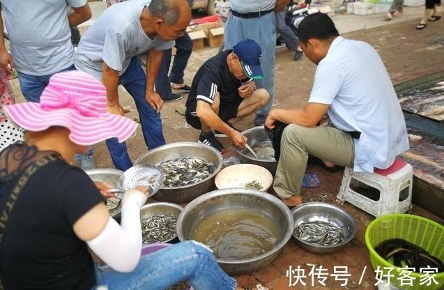 小夫妻|小夫妻顶烈日卖鱼不容易,很多人见到车上的设备后却放弃买鱼!