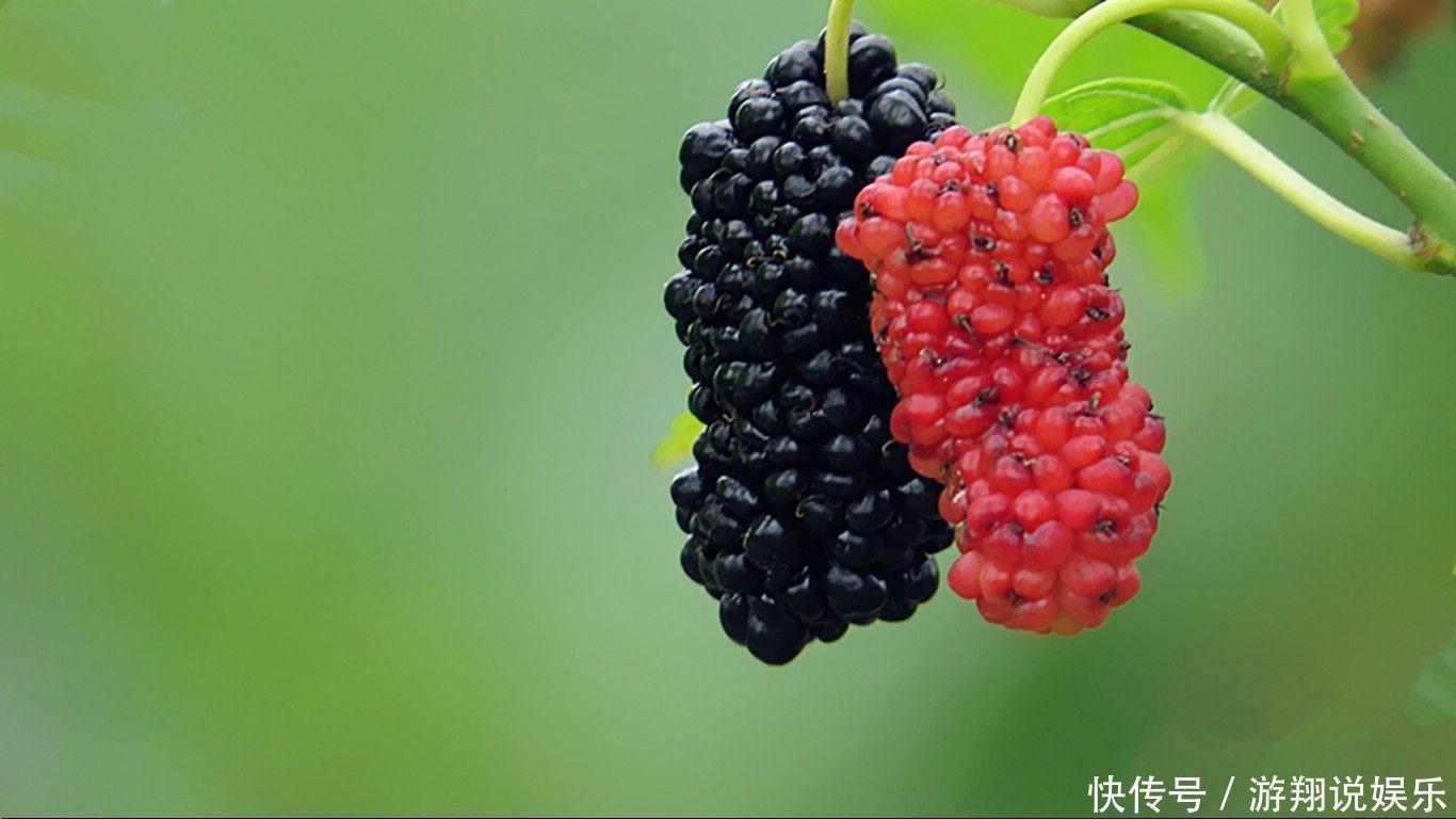 九成孕媽媽不知道,五月多吃四樣水果,能促進寶寶身體發育