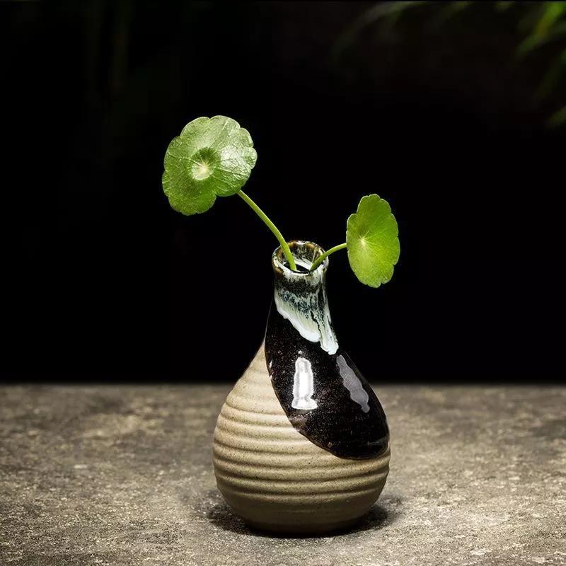 佛度|佛度俗人,茶净苍生