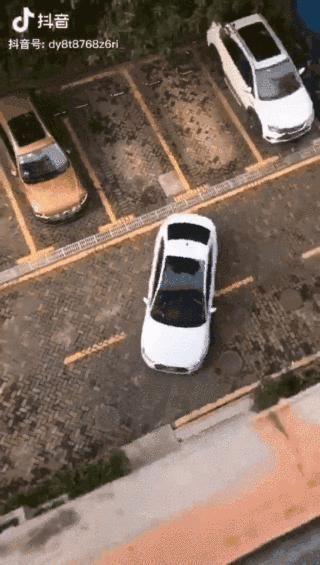 尴尬刚拿证开车上路,实际倒库,侧方停车都不会咋办教练教你两招