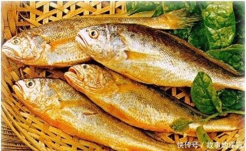 食用|此鱼对人体有很好的补益作用,尤其适合中老年人食用,早吃早健康