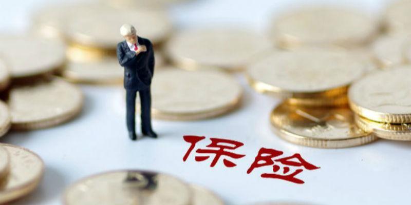 胡晓义:对养老保险制度的四点认知