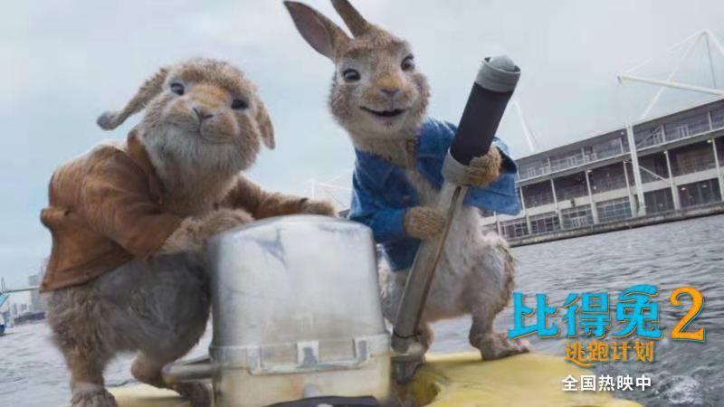 網絡評分7.5,《比得兔2:逃跑計劃》高口碑領跑端午檔新片