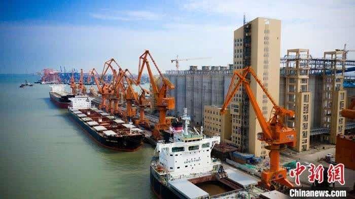 廣州港今年前4個月外貿進口糧食作業量同比增長130.5%