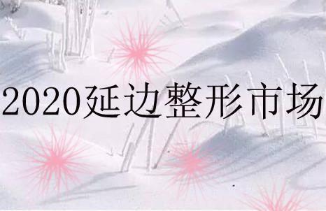 黄山+正品美容养生行业汇5G商城推荐