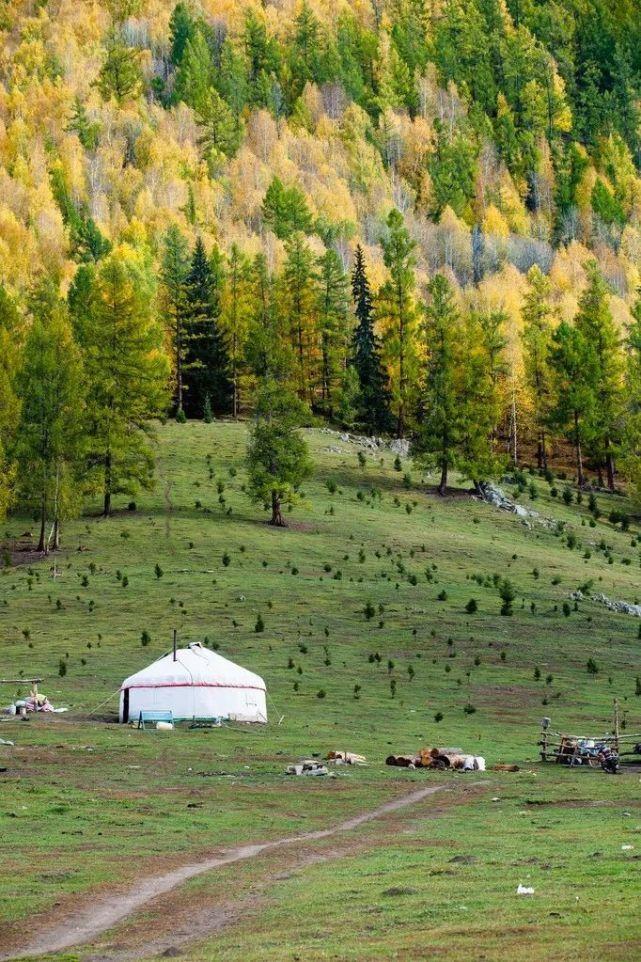 去新疆自驾一次,才知道中国的秋天多美!