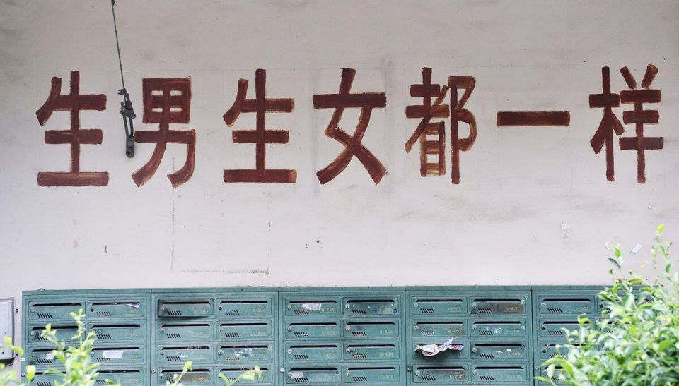 《我的姐姐》评分下跌,原因在张子枫?看完原型故事才知道真相