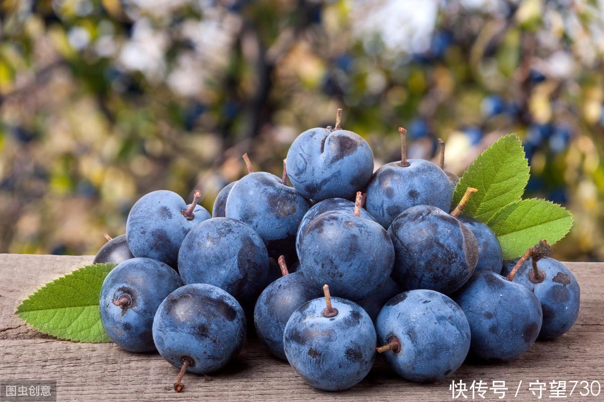 心理測試:哪一顆藍莓最清甜多汁?測試你有什麼讓人羨慕的地方!