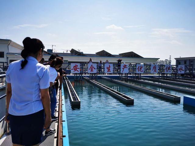 """你家的自来水如何来的?记者探访周口银龙水厂""""核心秘密"""""""