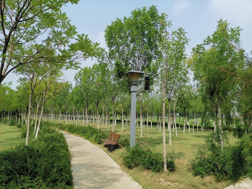 津南海教园湿地公园