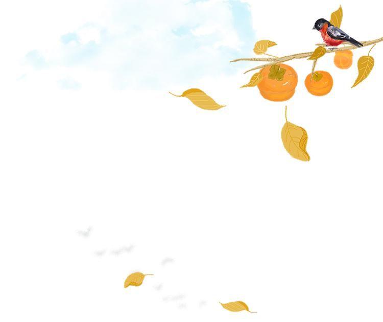 告别如画深秋,迎接诗意冬天