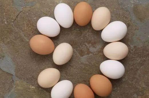 女人別太節儉!常吃4種「零食」,補充雌激素,勝過去「美容院」