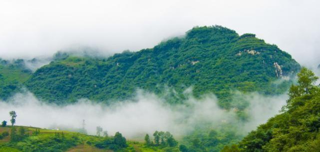 我国|我国非常有名的4座山,爬过3座就厉害了,你爬过几座呢
