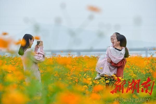 衡東:「濕地花海」護碧水