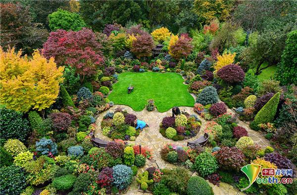 """英国老夫妇巧手打造""""四季""""花园 色彩斑斓"""