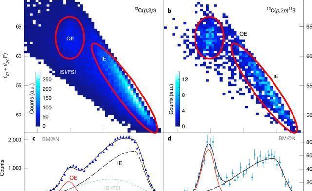 """以光速投掷""""核飞镖"""":物理学家翻转粒子加速器以获得清晰的原子核视野"""