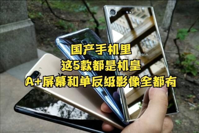 手机|国产手机里的战斗机,这4款都是机皇,A+屏幕和单反级影像全都有