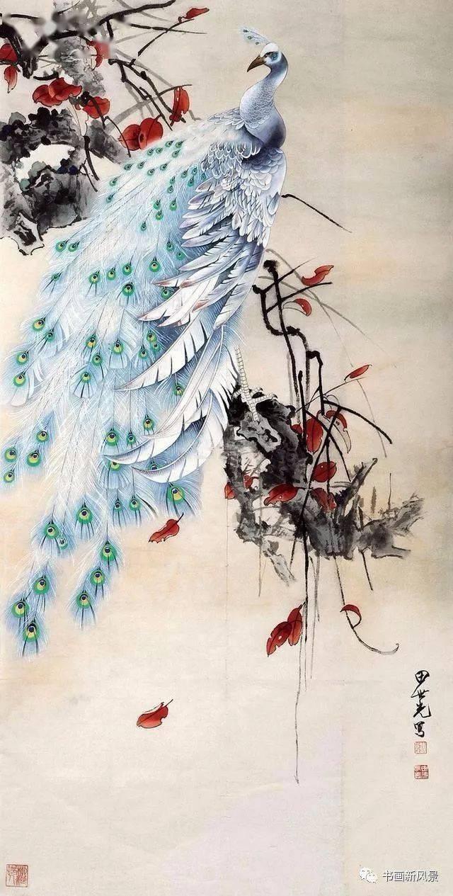 田世光 笔下的孔雀,漂亮至极,殊为难得