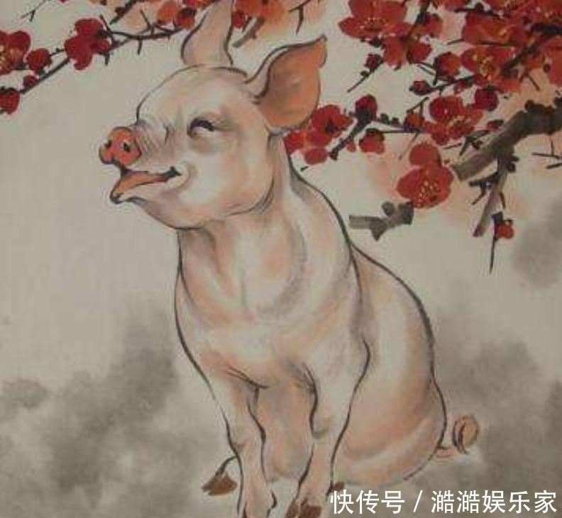 最有錢的屬豬人出生在這些月份,命中多金