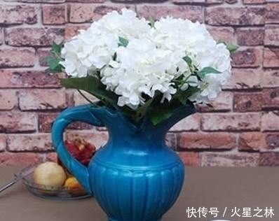 心理測試:憑直覺,哪一個花瓶之中裝滿瞭水?測你最近的好運氣