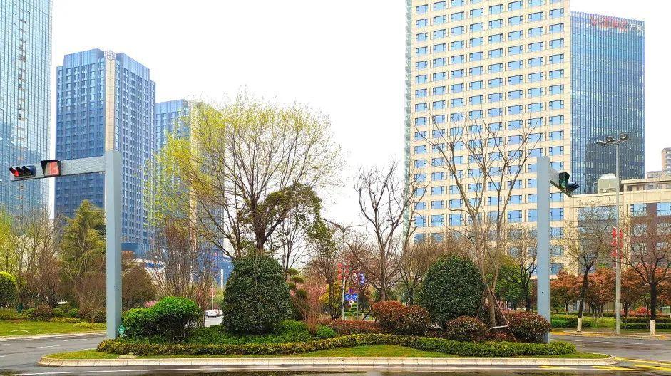 西安经开区开展城市绿化环境改造提升工作