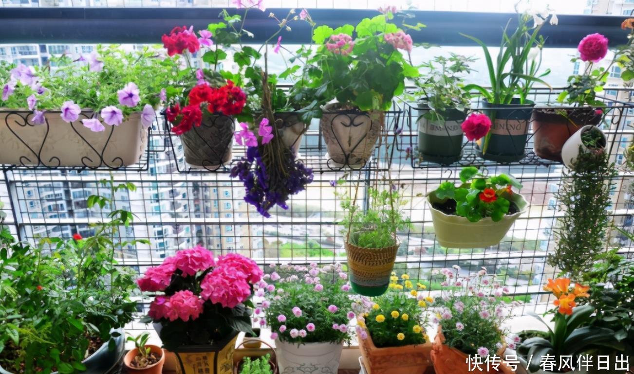 家庭制作养花肥的方法、使用的好处和注意事项