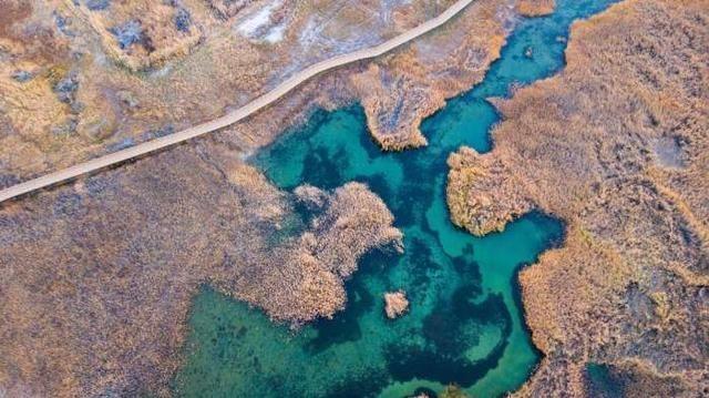 西北的大漠戈壁還藏着一個風景極美的濕地公園,知道的人極少!