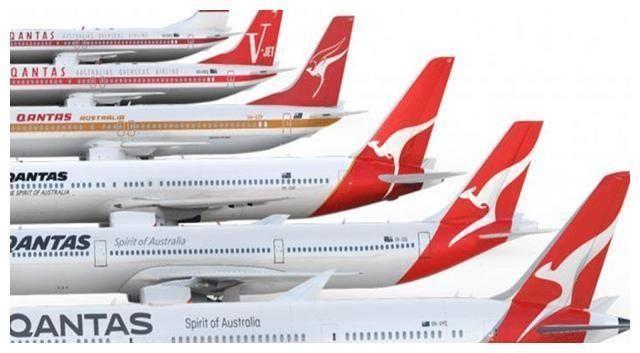 澳洲18個航班晝夜不停,使出渾身解數運龍蝦,極力供應中國市場