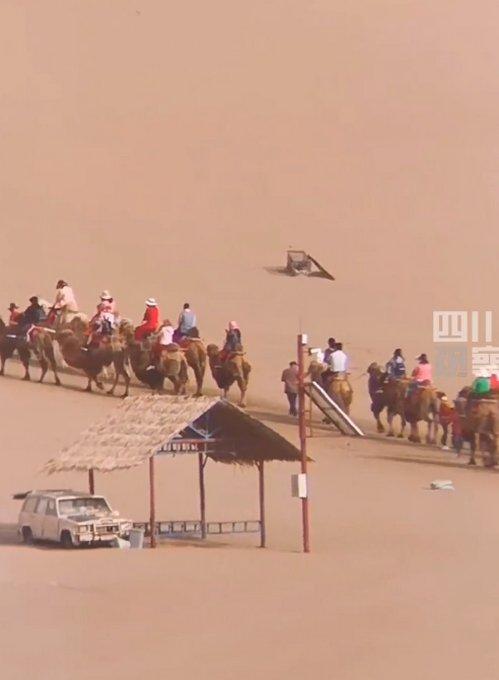 游客敦煌旅游拍到壮观一幕,看呆网友:见过堵车的,这是堵骆驼?