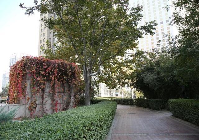 首都绿化办专家组检查验收朝阳区花园式社区创建工作