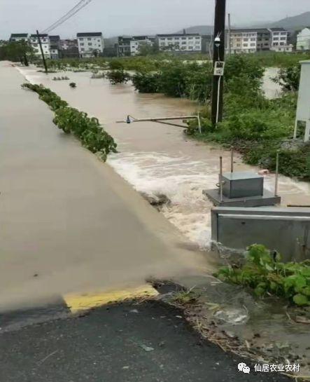 七台河+正品生态农业招商加盟