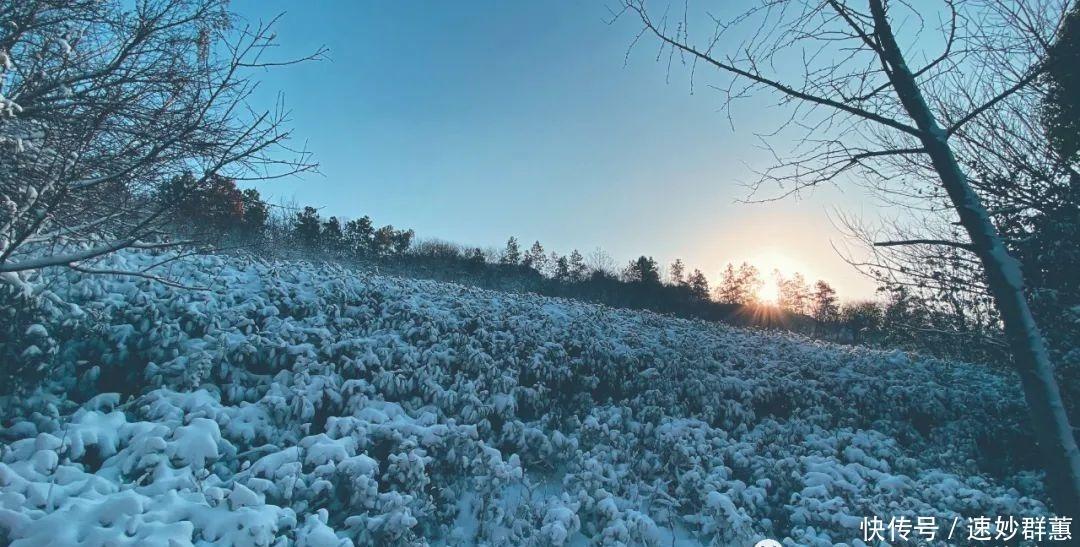 冬日秘境中的八公山,每一幅都美成了屏保!