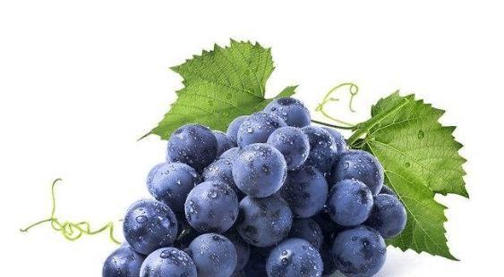 养内补外,健康人生,讲解能养出好气色的食物