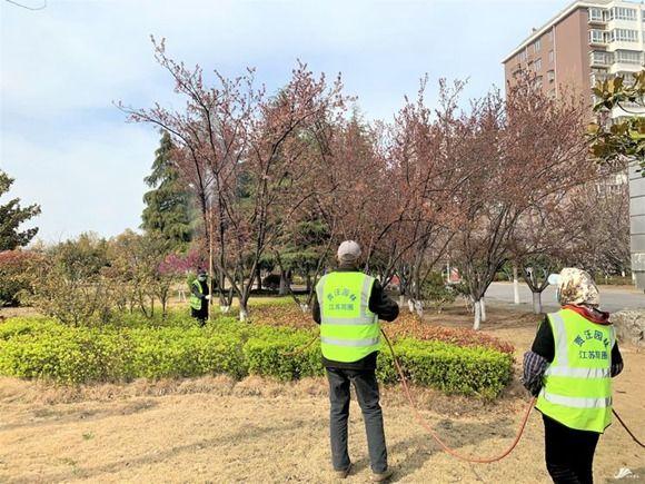 徐州贾汪:绿化养护忙 不负好春光