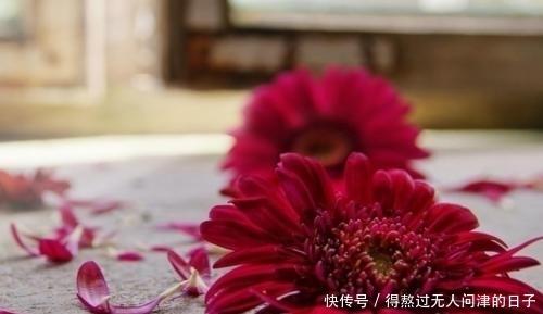 5月初,舊情還在,新歡言愛,斷絕過往,奔向新歡,大膽擁抱新生