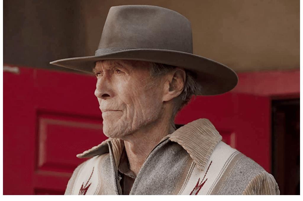 """麦克 因""""女佣事件""""电影被撤,91岁老戏骨顶替施瓦辛格,搁置十年重见天日"""