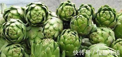 阳荷|奇怪的山野菜,就是去了山里也不一定认出来