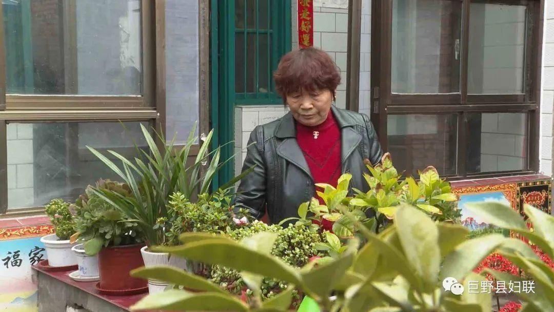 【我家庭院美如画 】 王凤兰家的鸟语花香