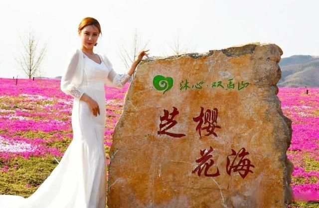 """""""我是你的光,带你去旅行""""。淄博沂源沐心双马山首届芝樱花文化节开幕"""