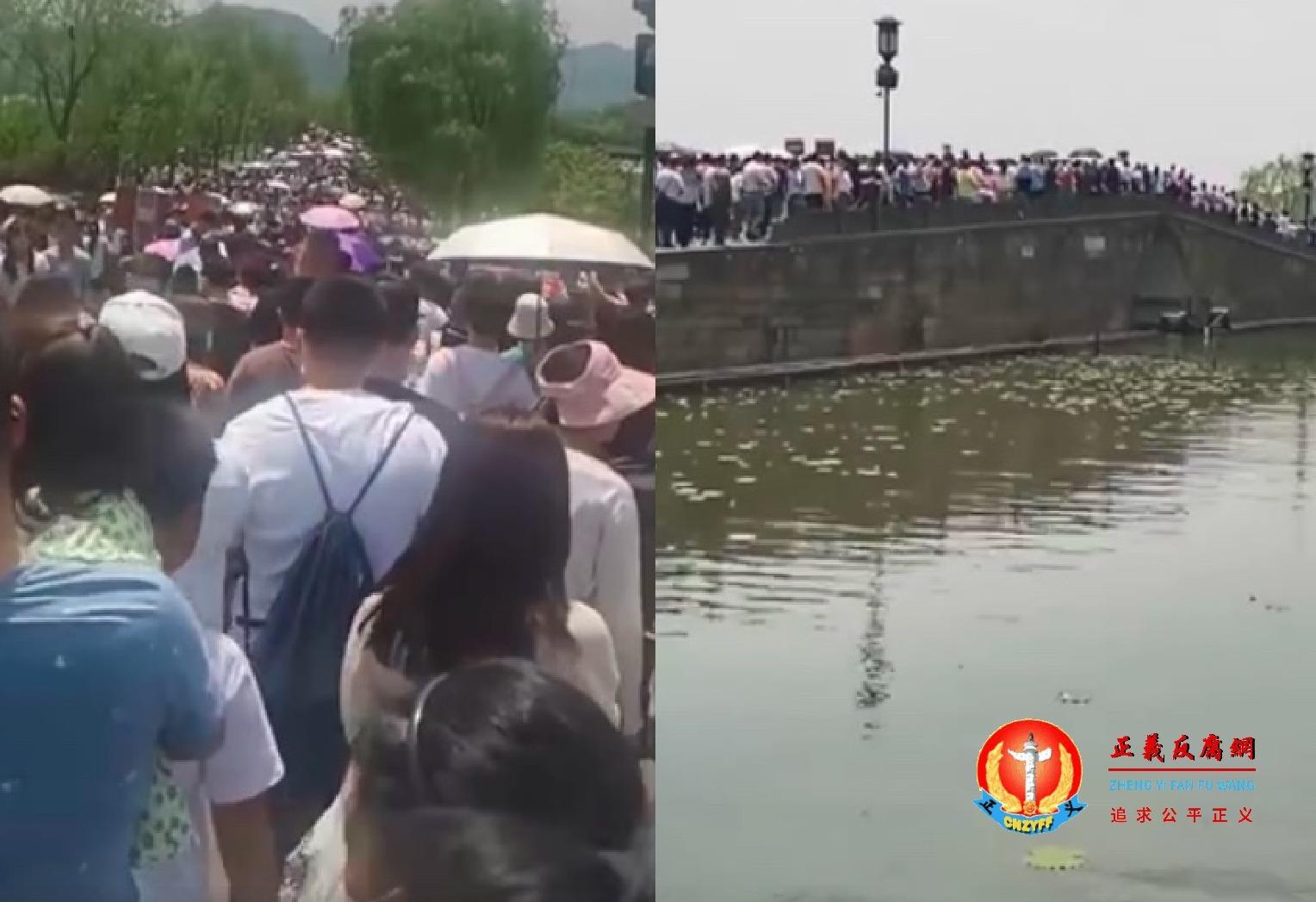 """微视频 浙江杭州西湖断桥成了""""人桥""""游客如织,山东泰山人多景区不认遭驳斥"""