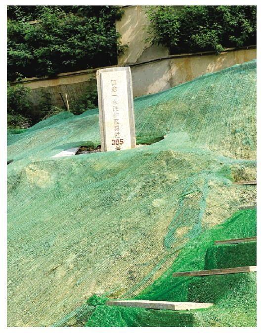 中央生態環保督察揭開滇池污染冰山一角 房地產項目環湖貼線開發建設每年至少1億噸污水直排內湖