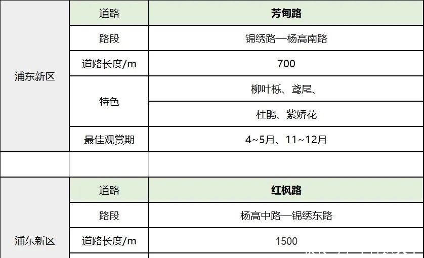 2020沪绿化特色道路评选结果公示中!来看浦东有哪些