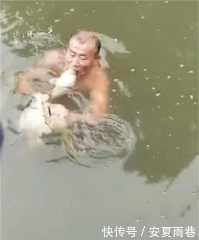 淡定|大爷从河里捞出几条鱼,之后网友不淡定了:太贪心!