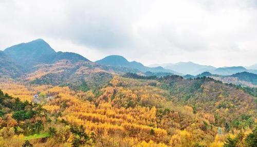 西北最值得去的景区,被誉为悬崖上的奇迹,能和敦煌莫高窟齐名!