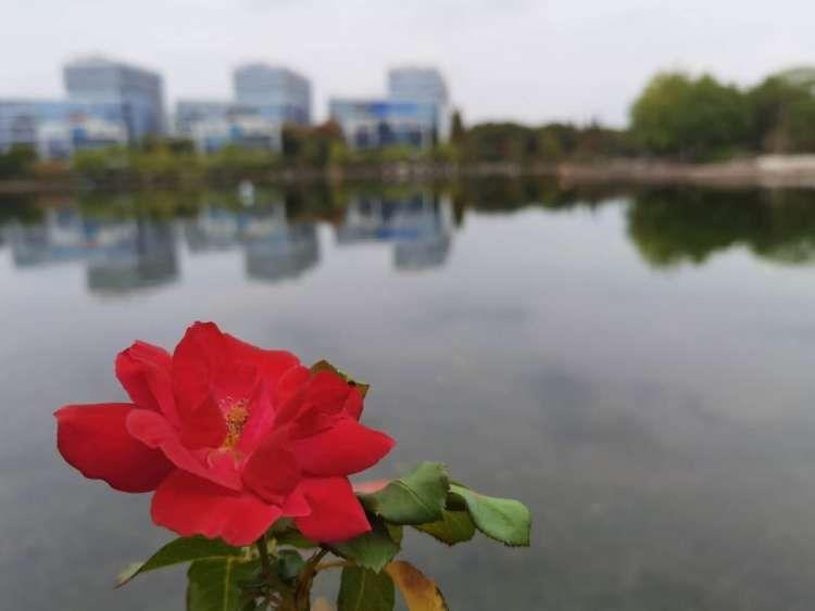 今夜到明天白天,上海轻度霾注意!周二冷空气到,降温2