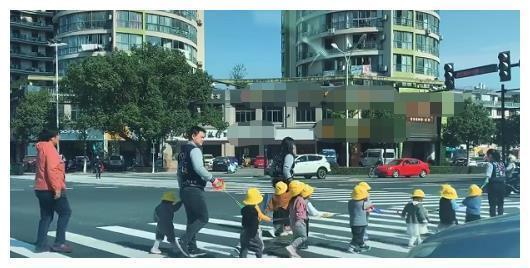 """孩子们 偶遇幼儿园""""小黄帽""""排成排过马路火了,车前大路上,走过一群鸭"""