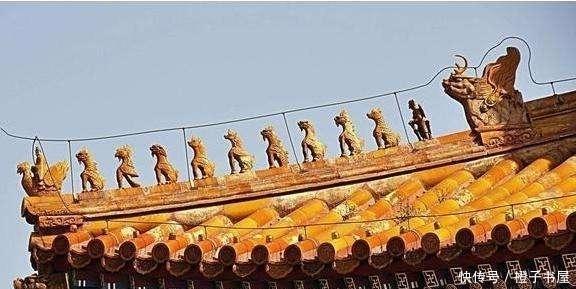 专家|为何故宫六百年来屋顶没鸟粪?专家:古人智慧,我辈难以企及