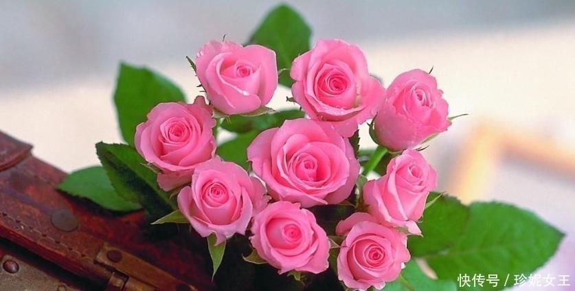誰的生日是此3個月,缺錢時有人幫,缺愛時有人陪,享福長久