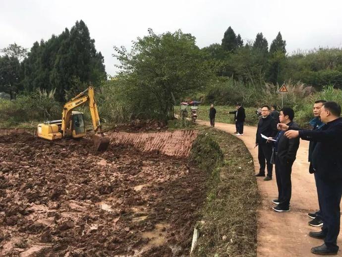 安居区 追踪丨安居区滞后两年的土地整理项目计划11月底前全面完成